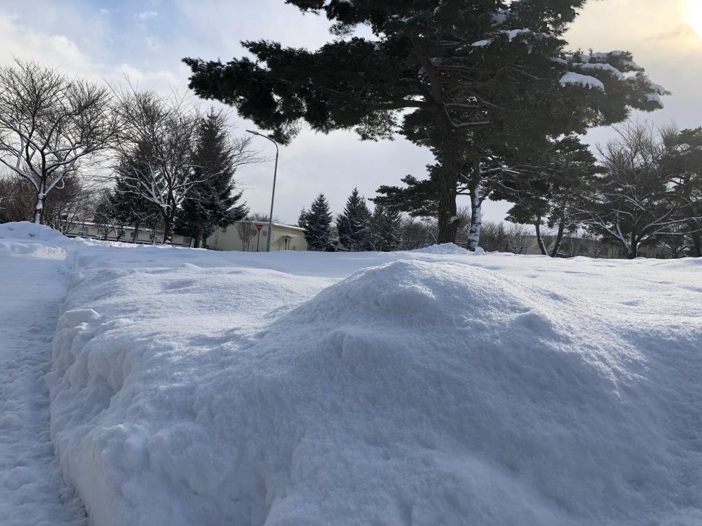 Misawa Snow