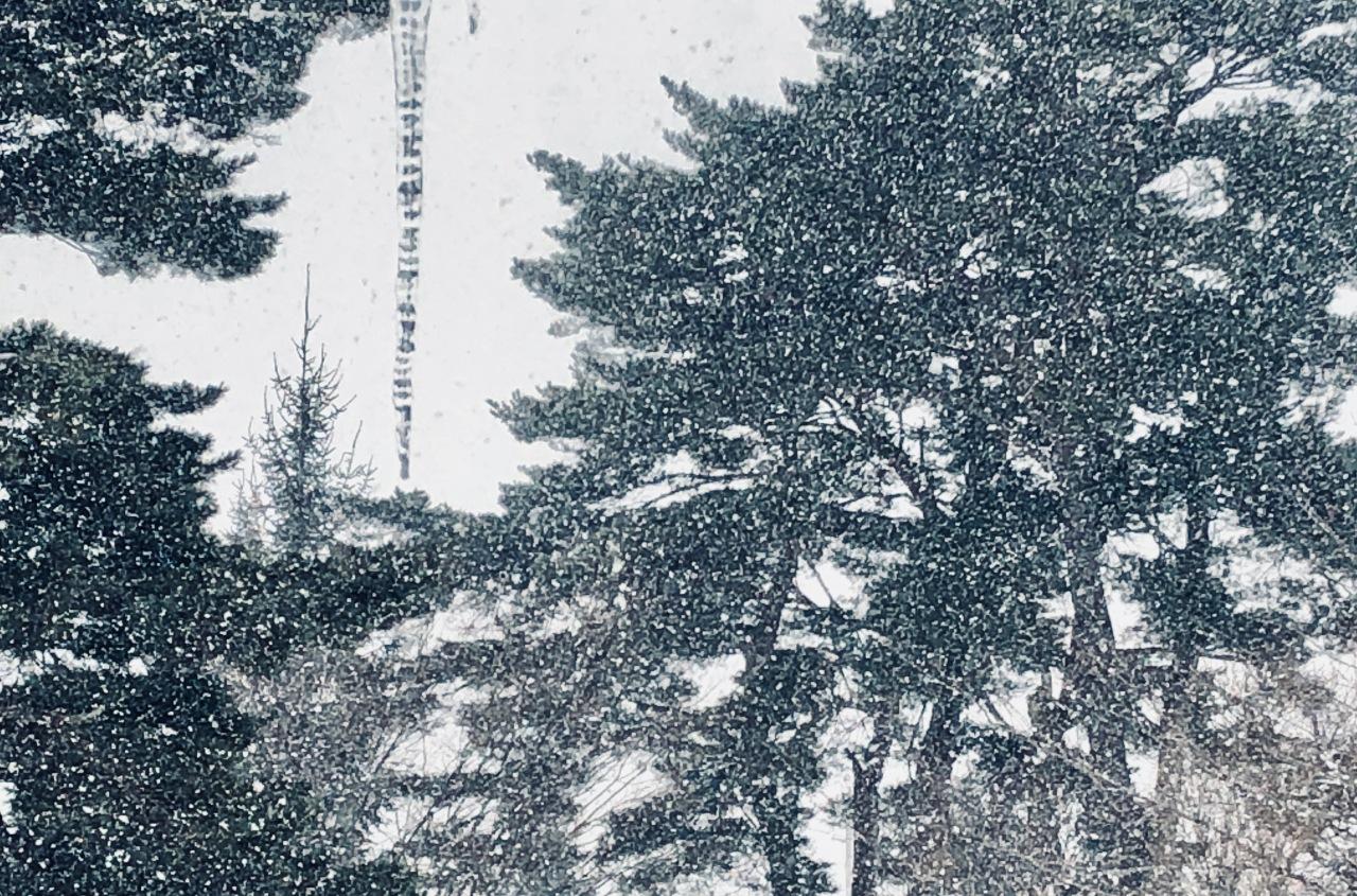 Snow Haiku