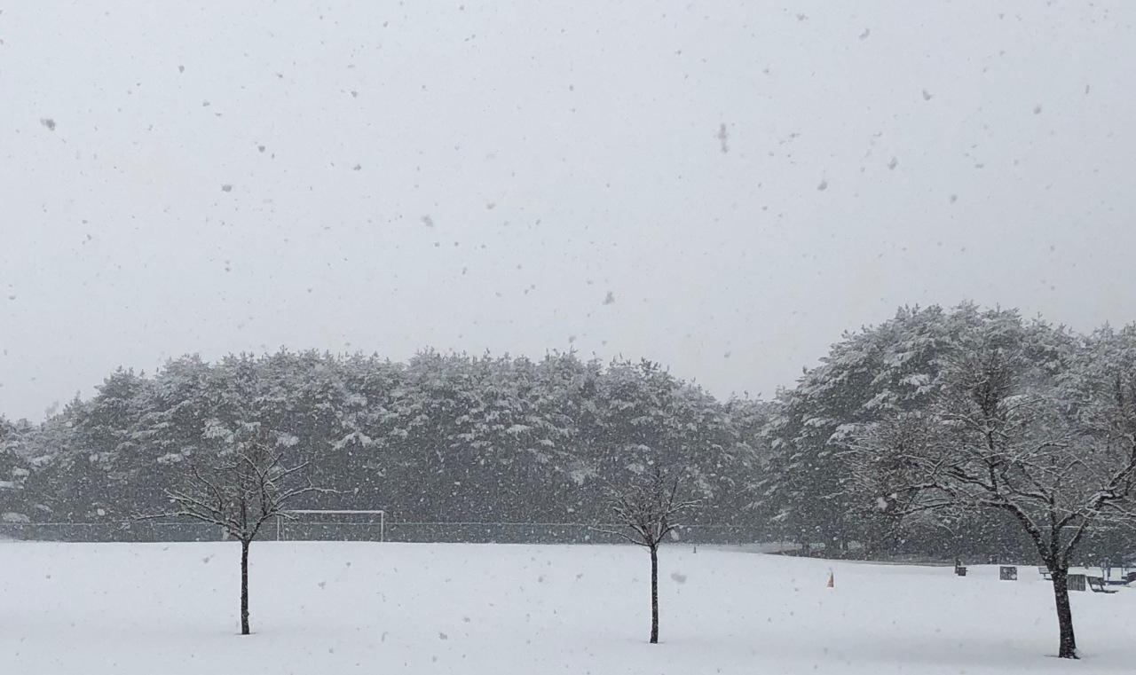 Snow Haiku 3
