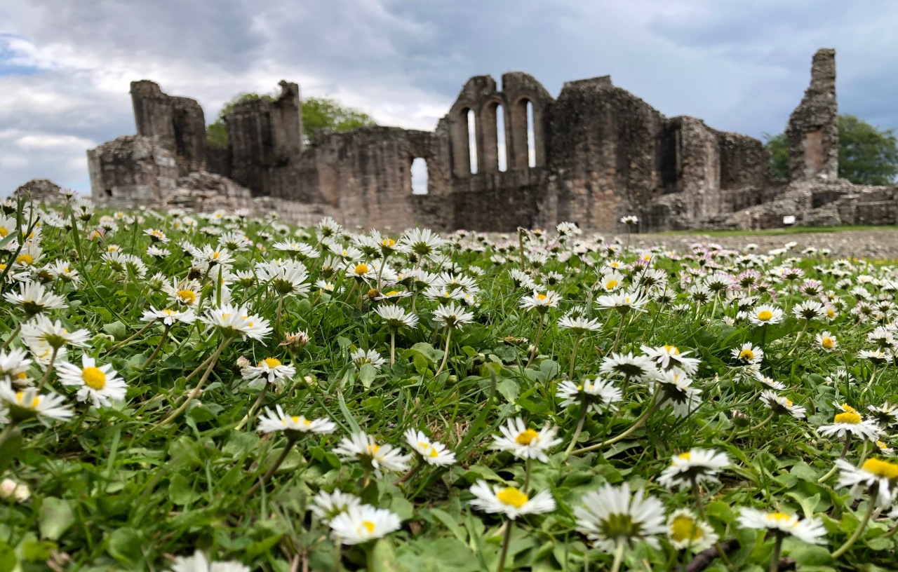 Flowery View of Kildrummy Castle