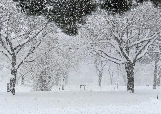 Misawa Snowfall