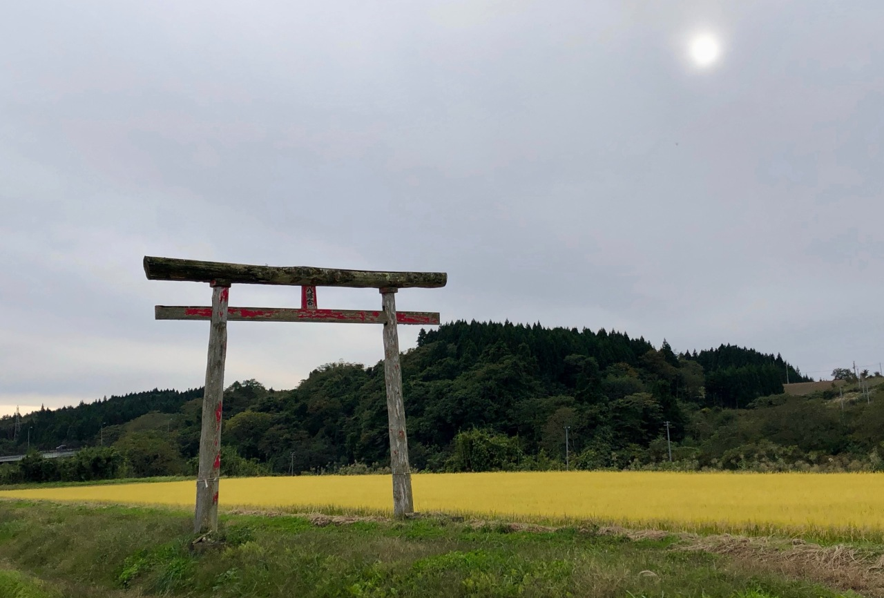 Torii and Rice
